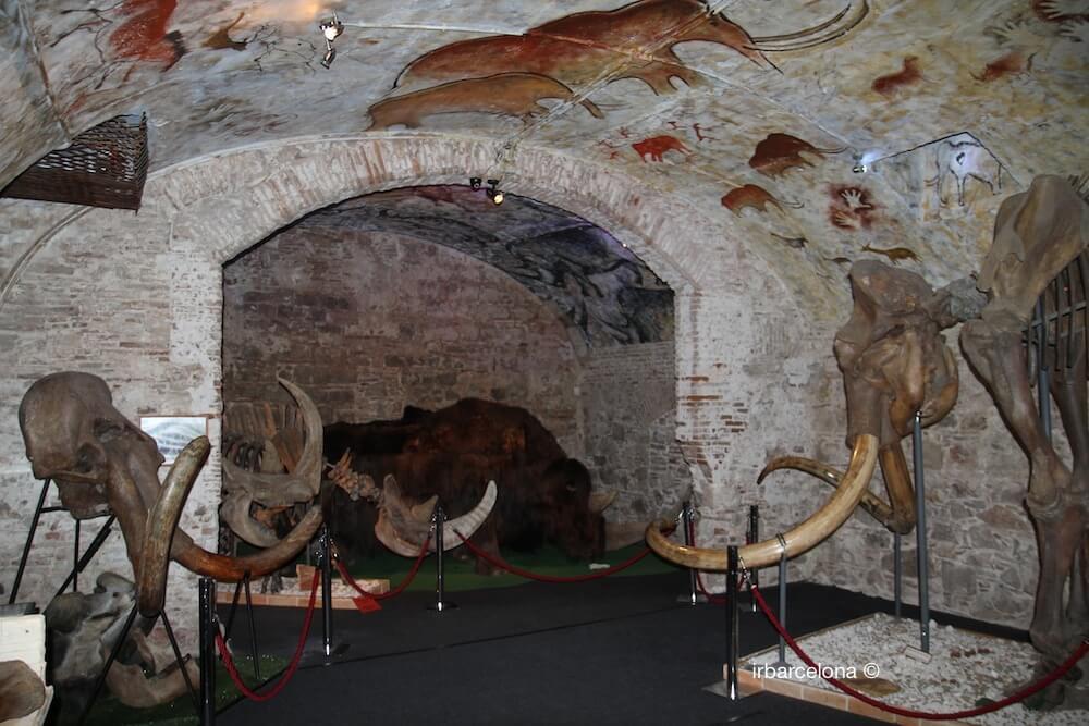 sala Museo del Mamut