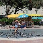 chica jugando con las palomas