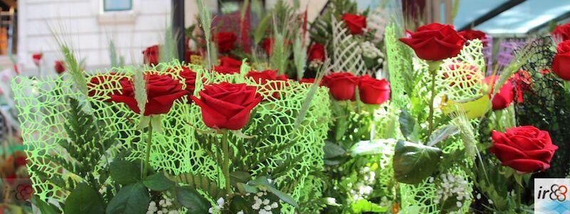 parada Rosas Sant Jordi