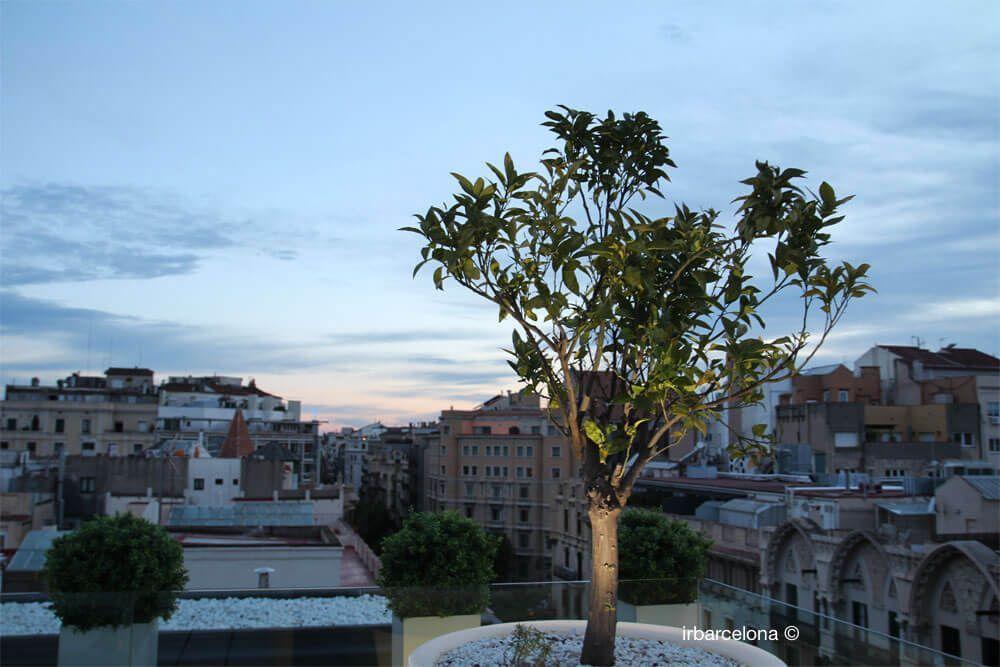 vistas terrazas hoteles de barcelona