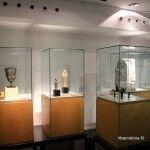exposicion del museo