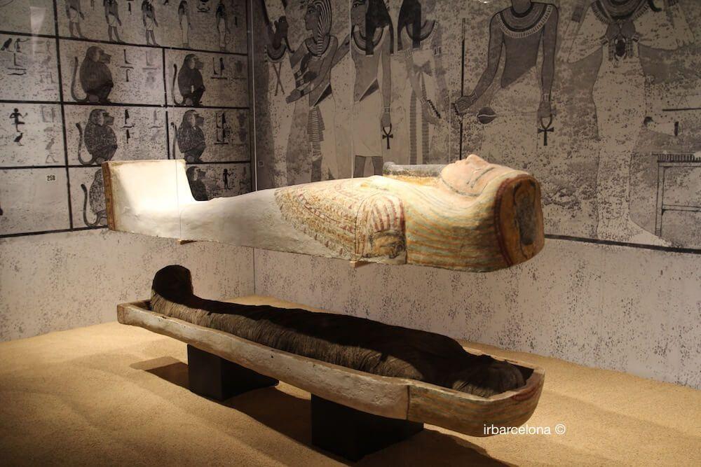 entradas Museo Egipcio