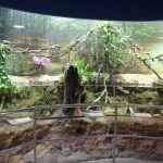interior Aquarium Barcelona