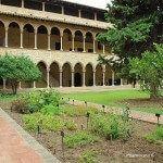 jardin medicinal claustro Monasterio de Pedralbes