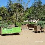 jardin sensorial