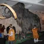 fiesta infantil Museo Mamut