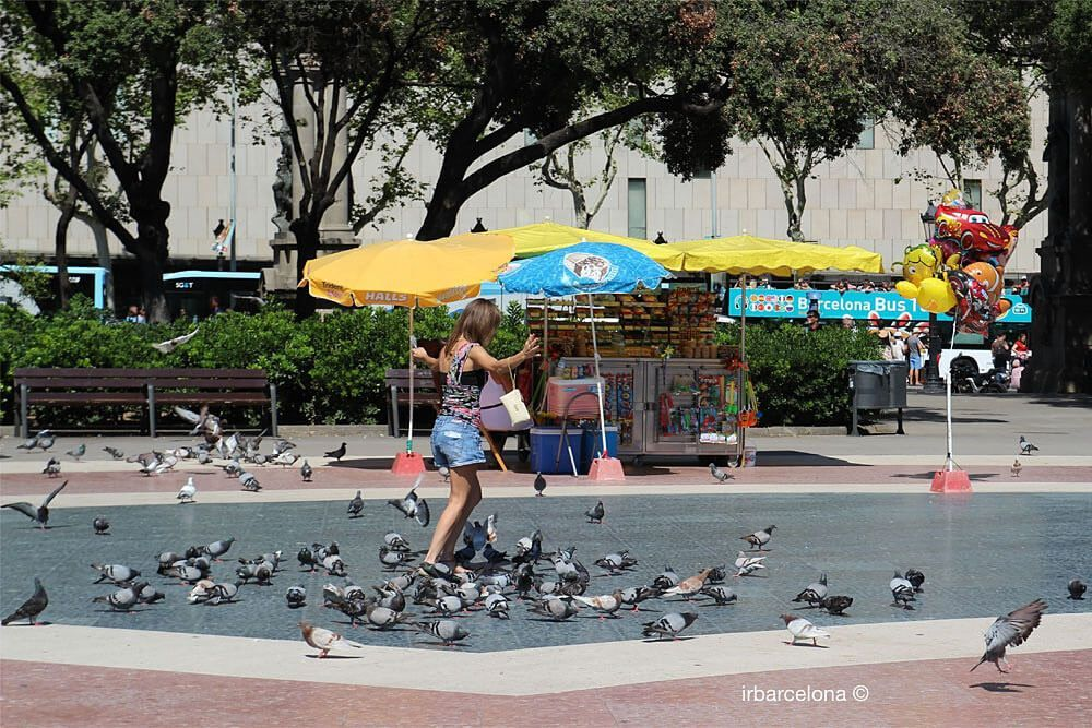 girl playing with pigeons