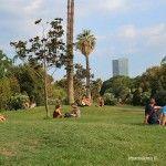 relax en el Parc de la Ciutadella