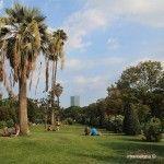 imagen típica del Parc de la Ciutadella