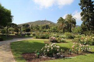 Roserar Parc de Cervantes