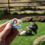 imán Zoo Barcelona