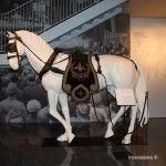 caballo para arrastrar las carrozas fúnebres