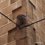 carassa en una fachada