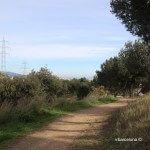 camino Torre del Baró
