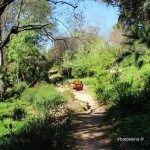 banco jardín botánico histórico