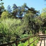 sendero jardín botánico histórico
