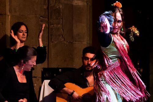 flamenco Palacio Dalmases