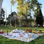 picnic Parque Barcelona