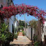 Calle de Aiguafreda