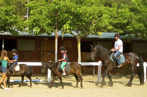 caballo Parque de Collserola